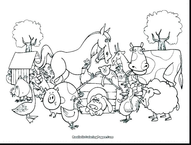 Realistic Farm Animal Coloring Pages At Getdrawings Free Download