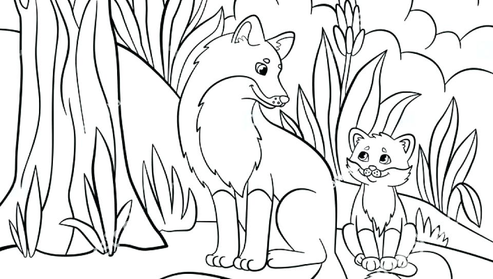 960x544 Realistic Animal Coloring Pages Also Wild Animal Coloring Pages