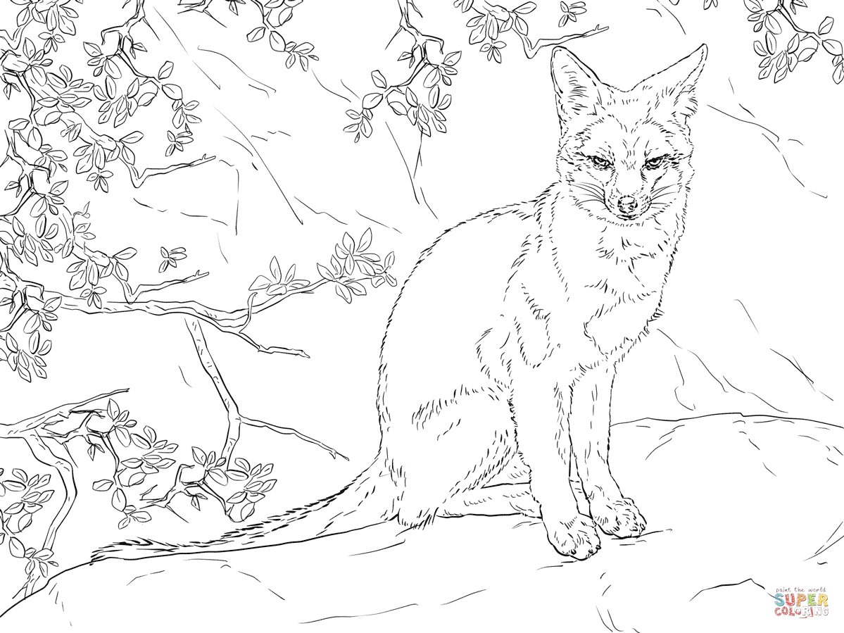 1199x899 Awesome Hard Realistic Fox Coloring Pages Design Free Adorable