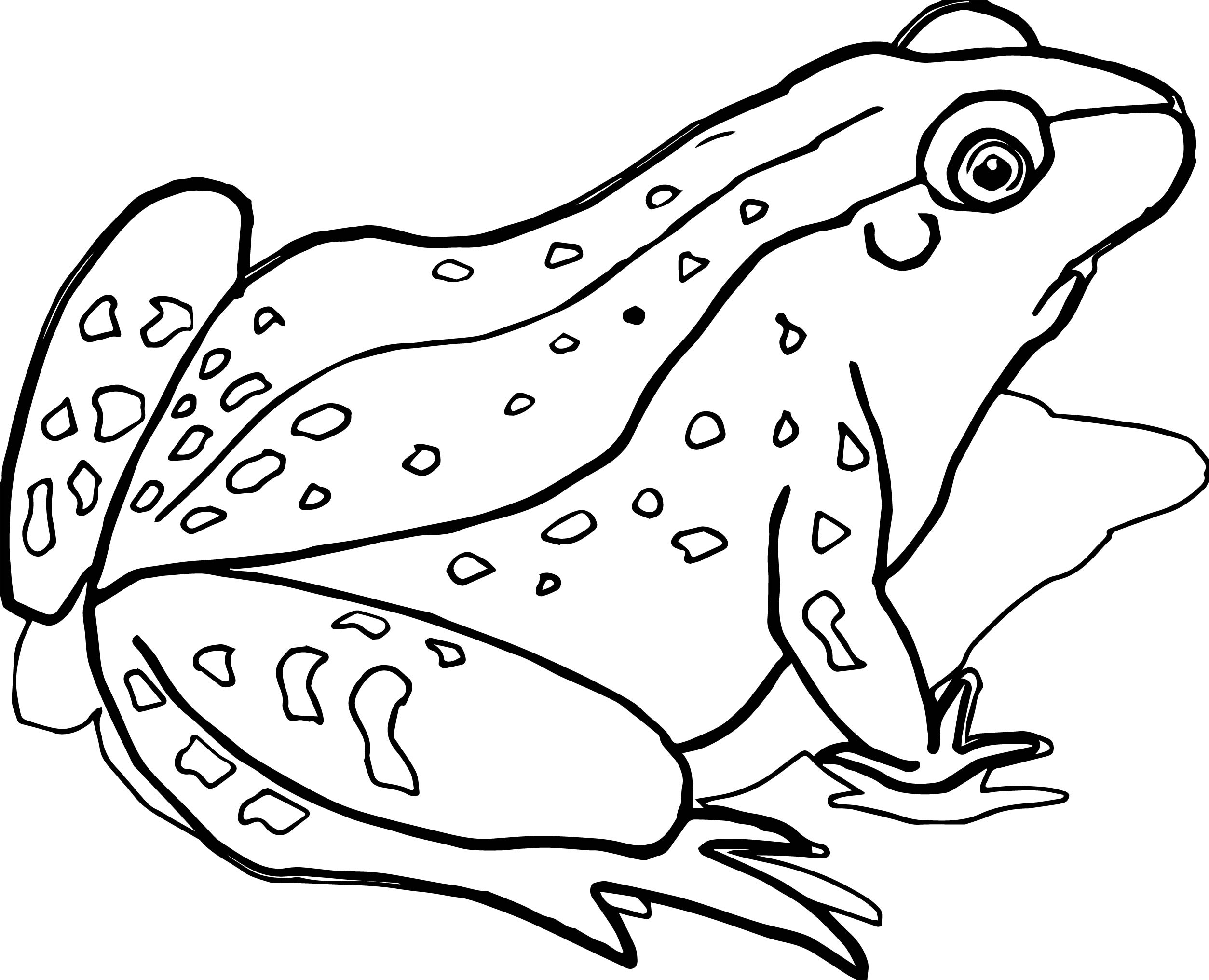 2507x2032 Frog Jumper Coloring Page