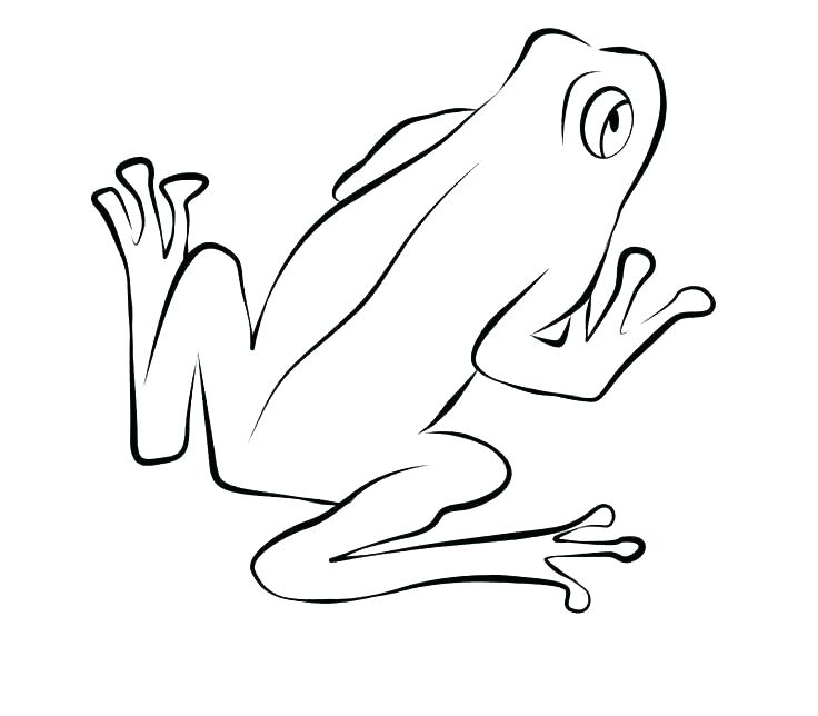 736x644 Frogs Coloring Pages Frog Coloring Pages Prints And Colors Tree