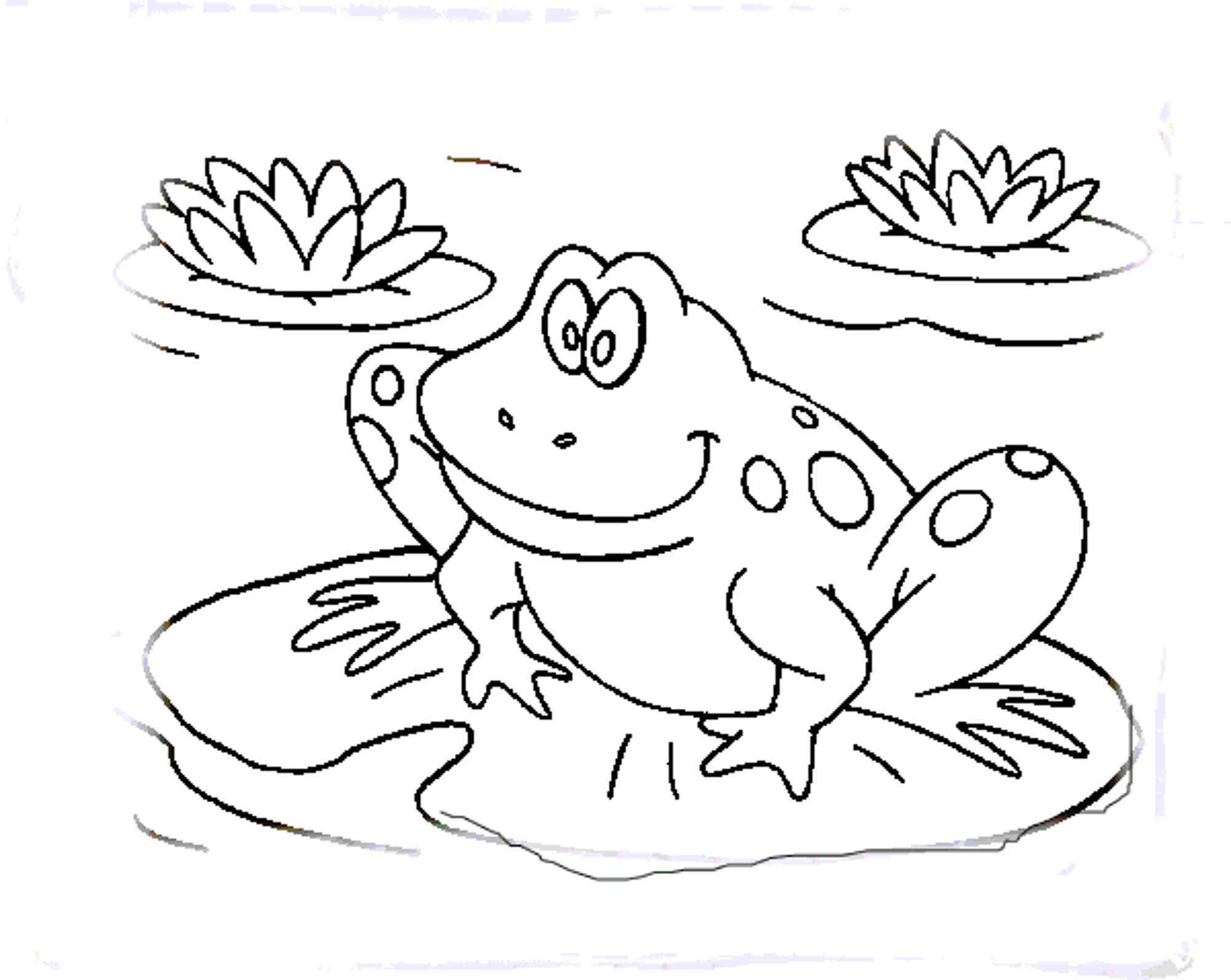 2000x1593 Coloring Pages Frog