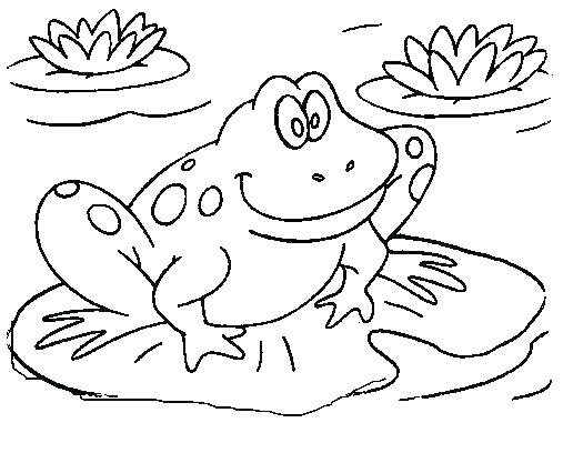 507x408 Coloring Pages Frog Best Frog Coloring Pages Ideas On Realistic