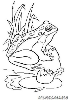 273x400 Coloring Pages For Kids To Print