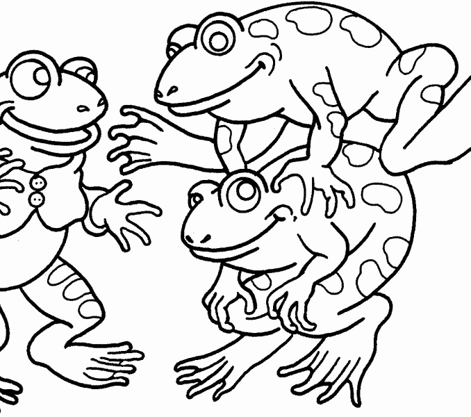 678x600 Crazy Frog Coloring Pages Stock Realistic Frog Outline Cute Frog