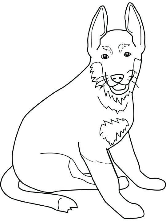540x720 German Shepherd Coloring Pages Shepherd Coloring Page Cartoon Cute