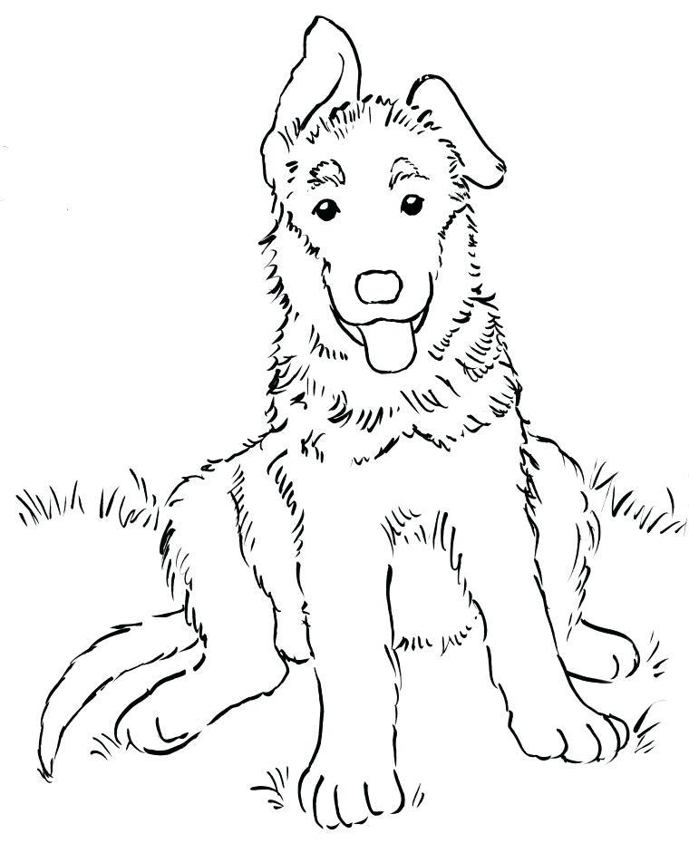 760x941 German Shepherd Coloring Pages Shepherd Puppy Coloring Page German