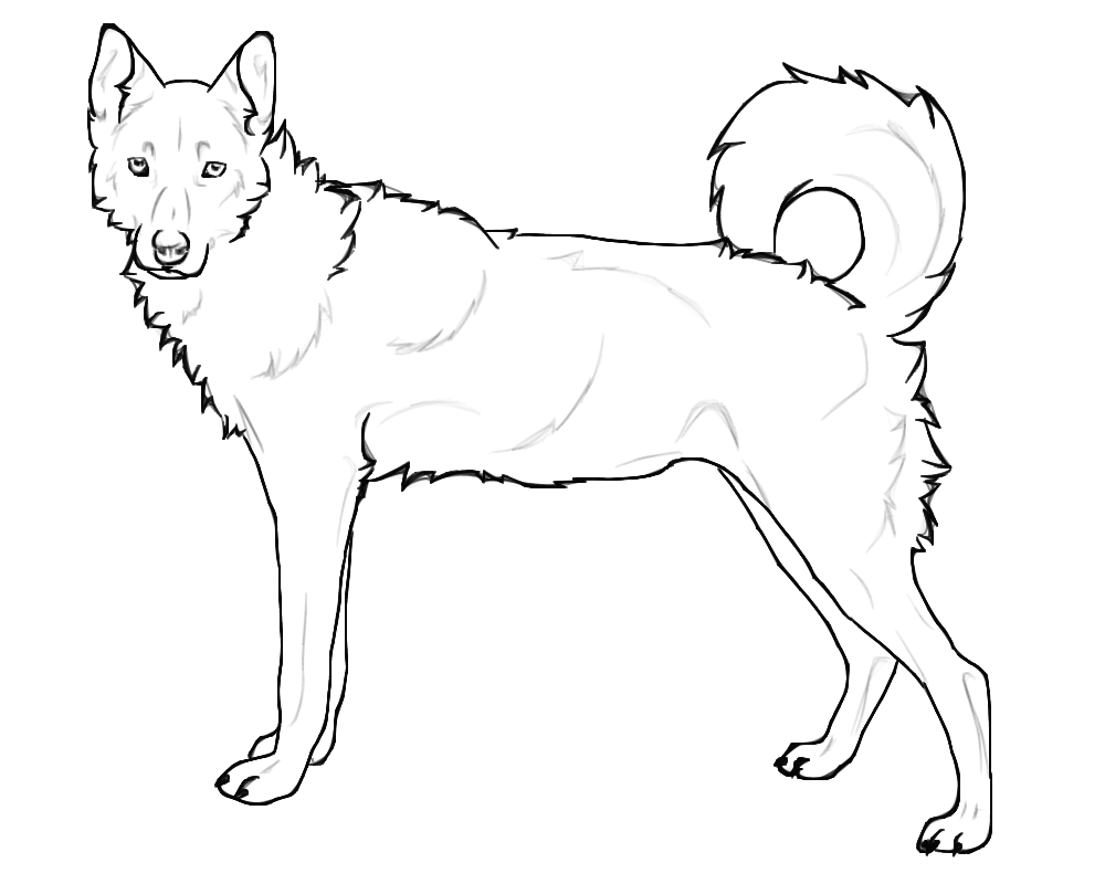 1000x800 German Shepherd Dogs Coloring Page Free Printable Pages Beautiful