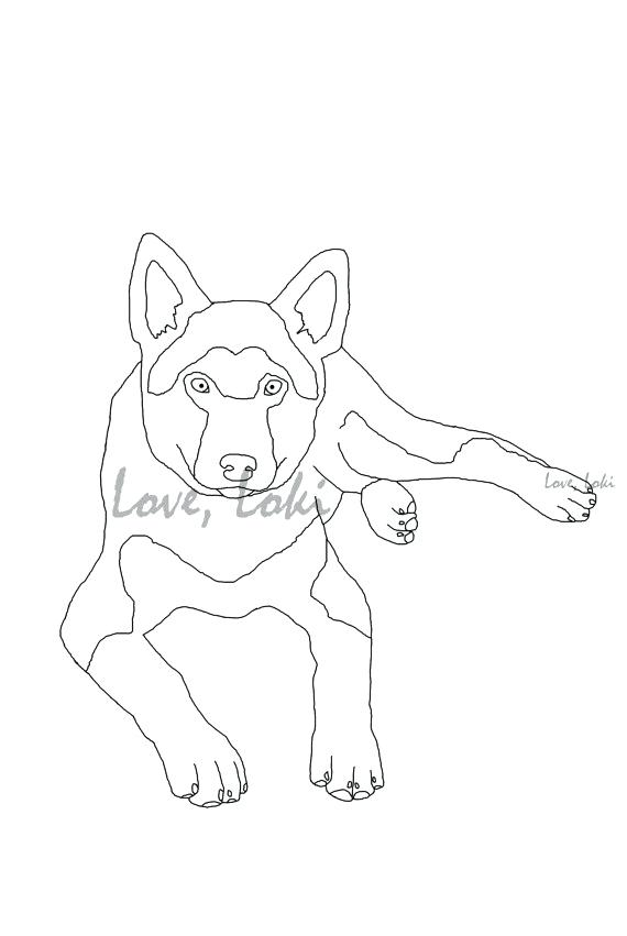 570x851 Shepherd Dog Coloring Page Printable Instant