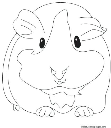 420x486 Guinea Pig Coloring Page Guinea Pig Coloring Pages To Print
