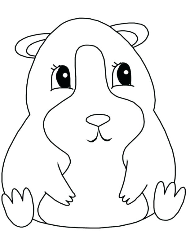 600x800 Guinea Pig Coloring Page Realistic Guinea Pig Coloring Pages