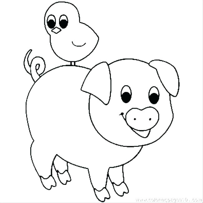 650x650 Guinea Pig Coloring Page Three Little Pigs Coloring Page Pig