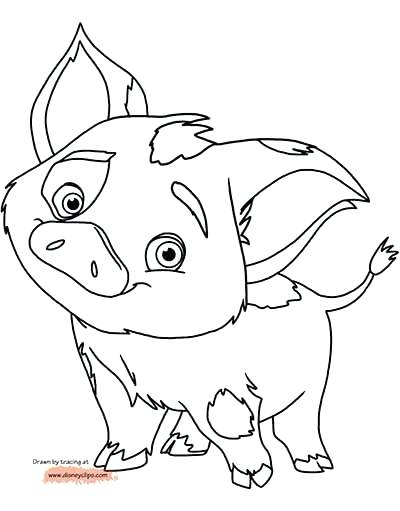 400x511 Pig Coloring Pages Coloring Pages Updated Realistic Guinea Pig
