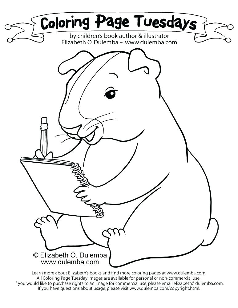 773x1000 Realistic Guinea Pig Coloring Pages Coloring Pages Of Pigs