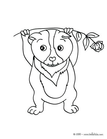 363x470 Guinea Pig Coloring Page Eating Guinea Pig Guinea Pig To Color