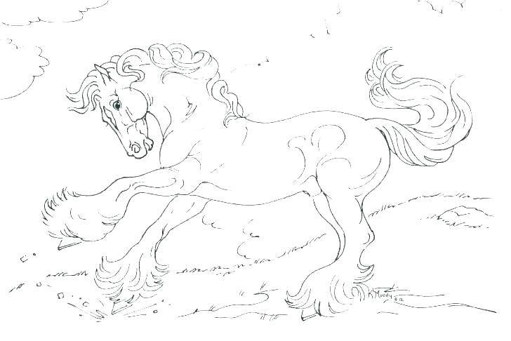 728x486 Realistic Horse Coloring Pages Horse Realistic Horse Head Coloring