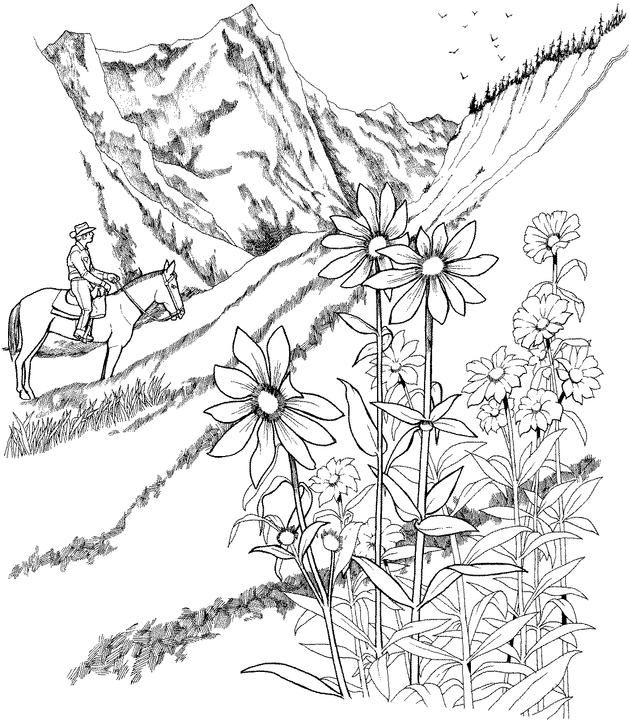Realistic Landscape Coloring Pages at GetDrawings   Free ...