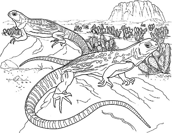 Lizard Man Coloring Coloring Pages