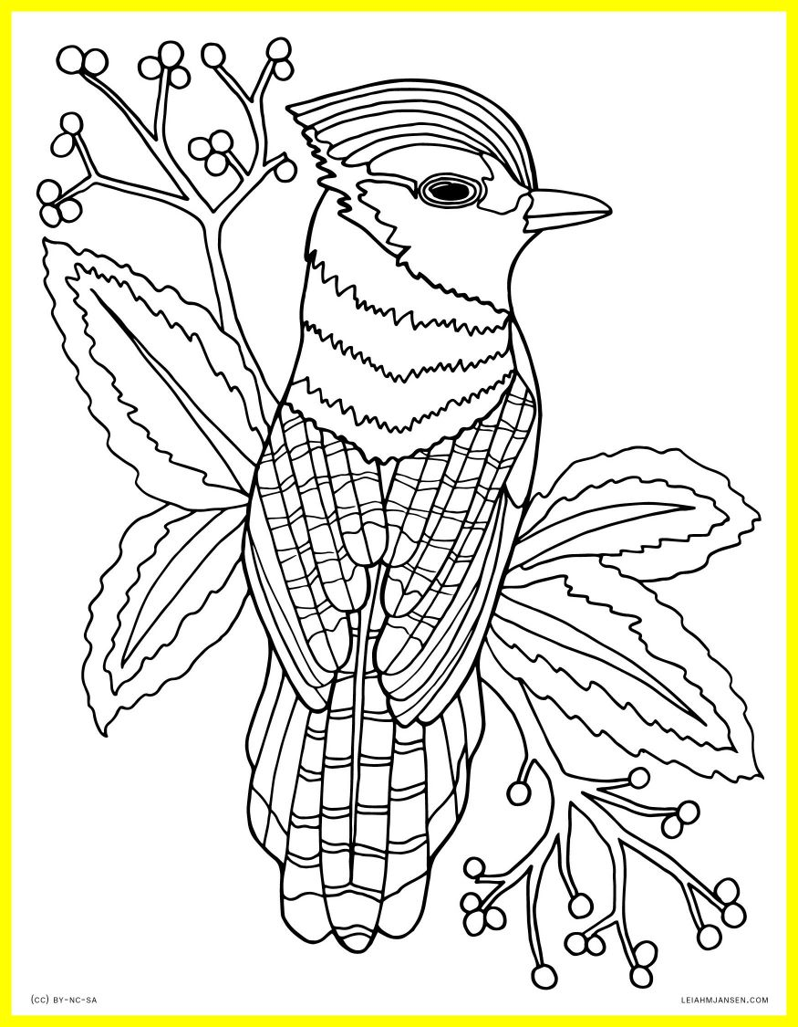 Realistic Nature Coloring Pages At Getdrawings Com Free For