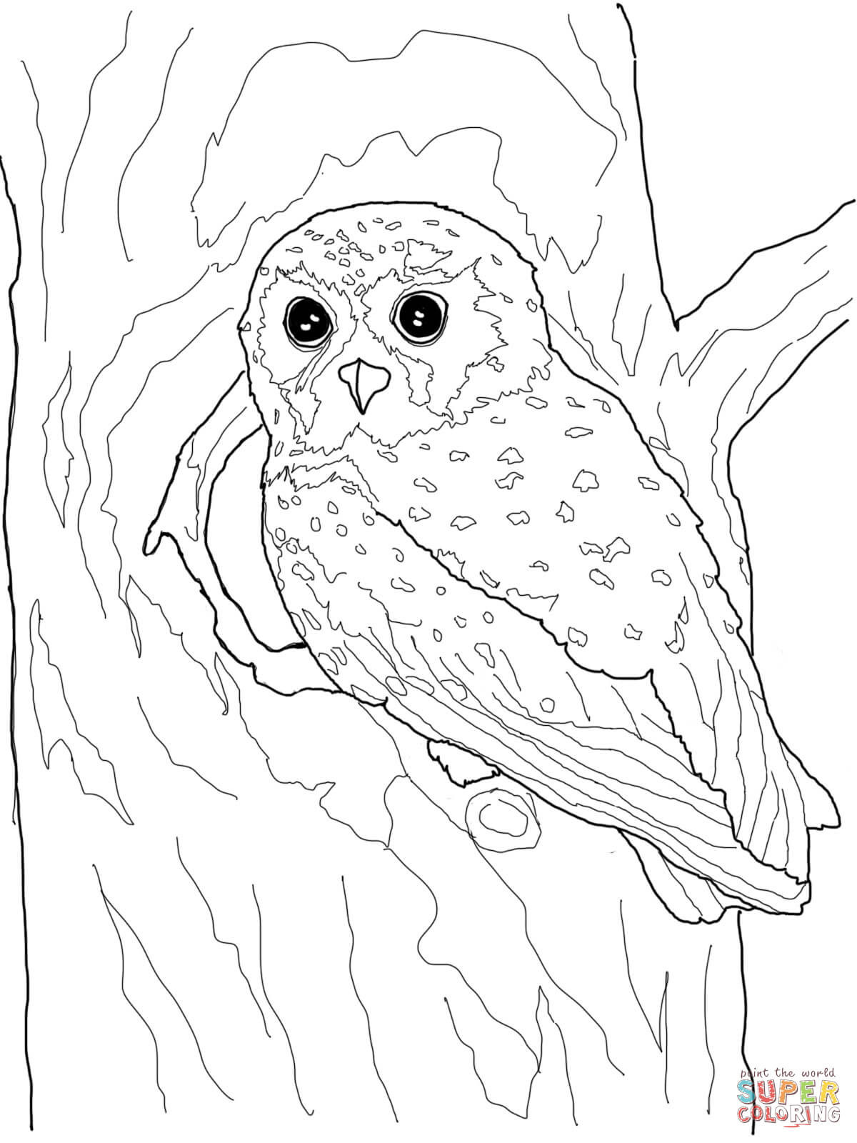 1200x1600 Owls Coloring Pages Free For Alluring Realistic Owl Wagashiya