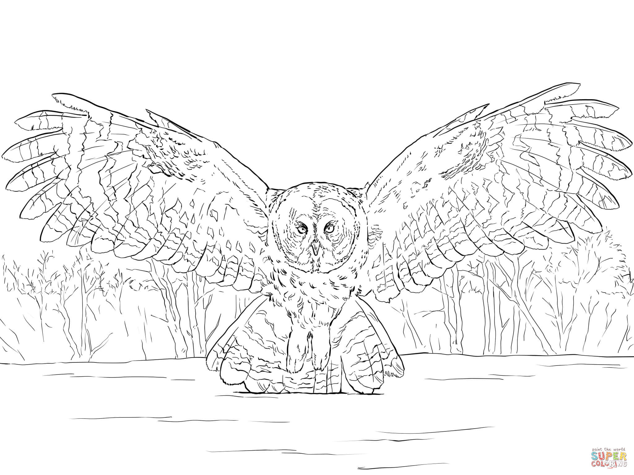 2048x1536 Practical Great Horned Owl Coloring Page Grey Flying Free