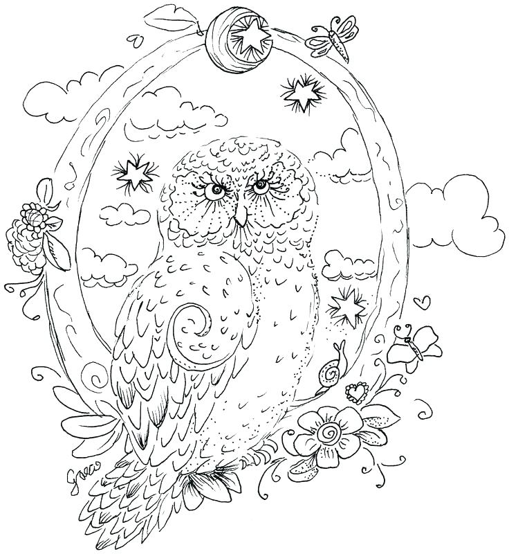 736x800 Realistic Barn Owl Drawing At Free For Personal Hard Owl Color