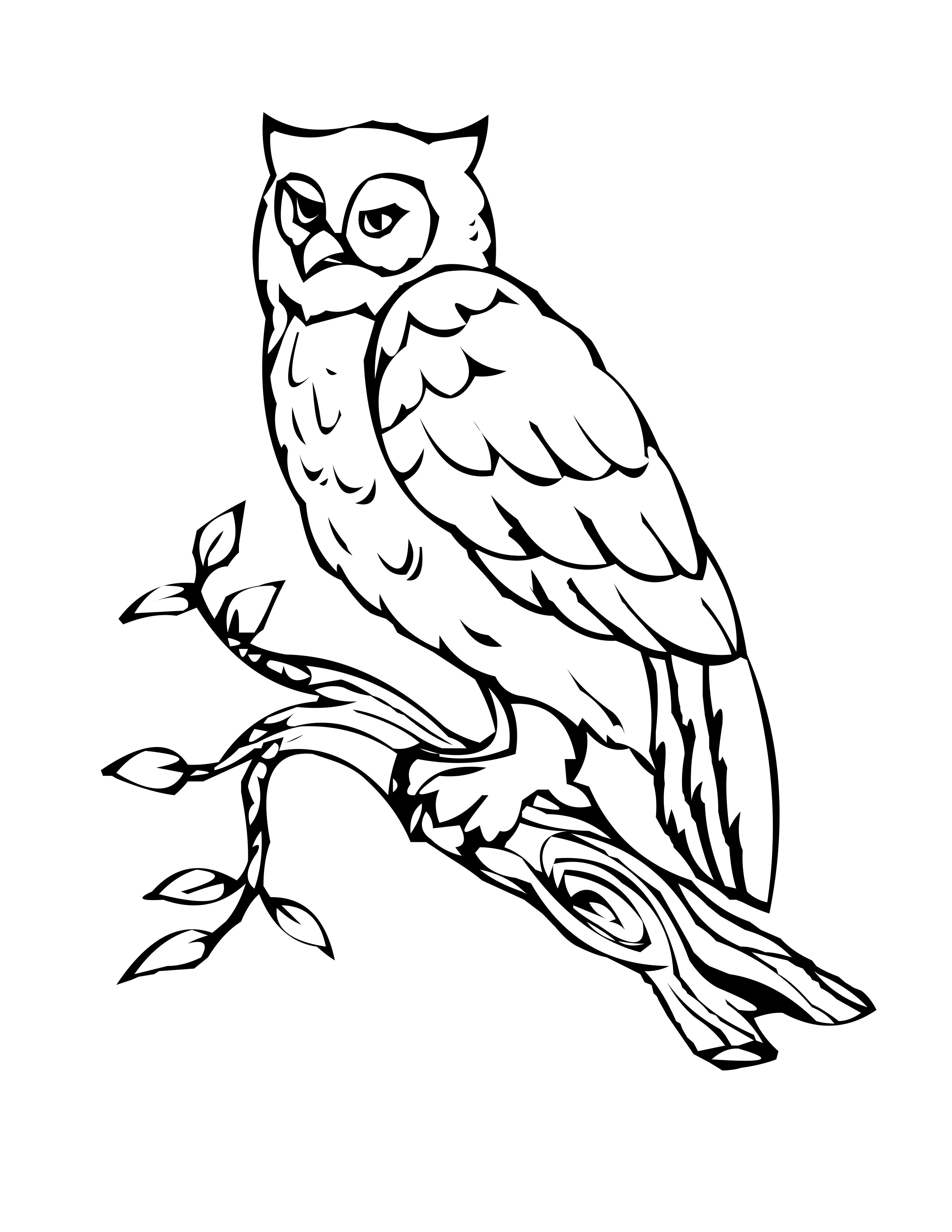 2550x3300 Shining Design Free Owl Coloring Pages Printable For Kids