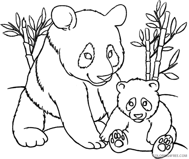 630x531 Realistic Panda Coloring Pages Eating Bamboo