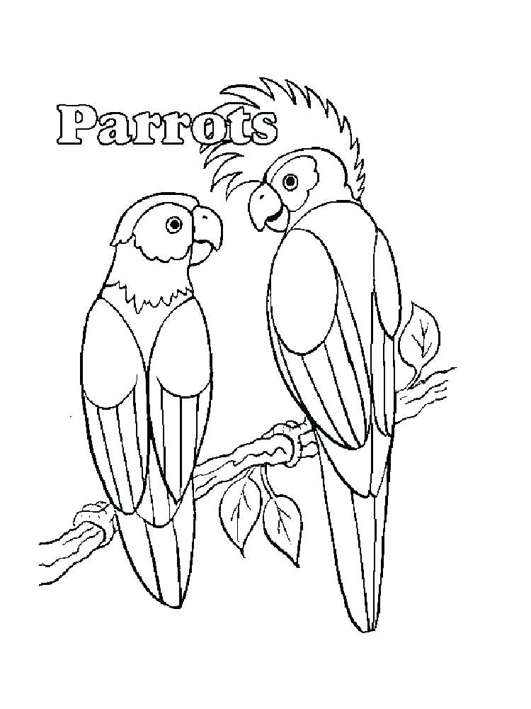 750x1000 Parrot Coloring Pages Coloring Pages Animals Parrot Parrot