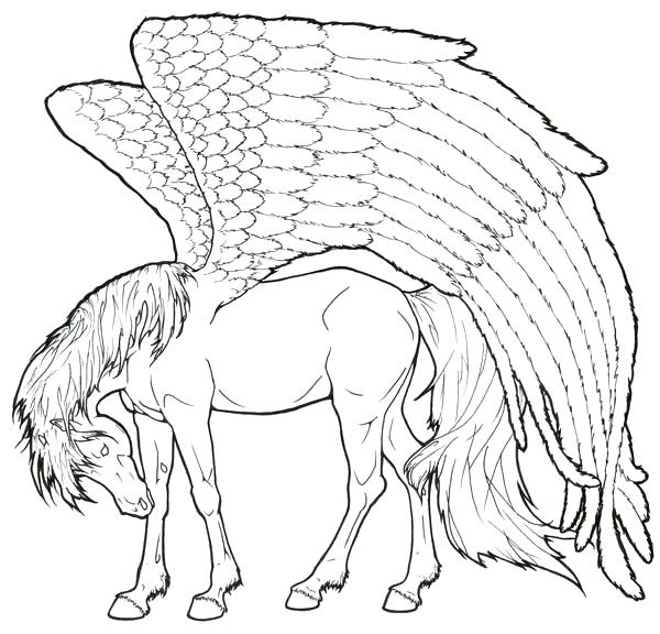 600x576 Pegasus Coloring Pages Realistic Coloring Pages A Inspire Energy