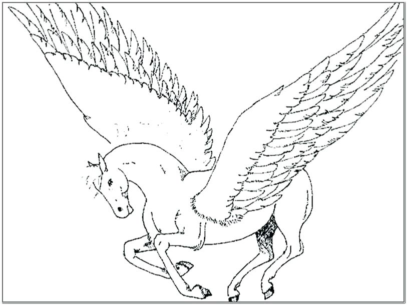 813x610 Pegasus Coloring Pages Coloring Page Coloring Pages Pictures