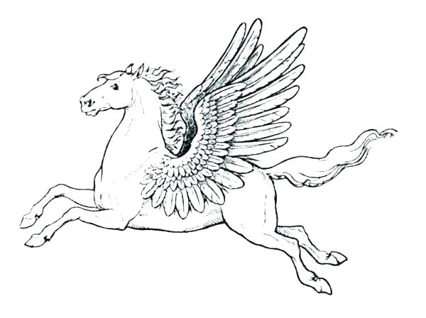 600x448 Pegasus Coloring Pages Coloring Page Minimalist Coloring Page Fee
