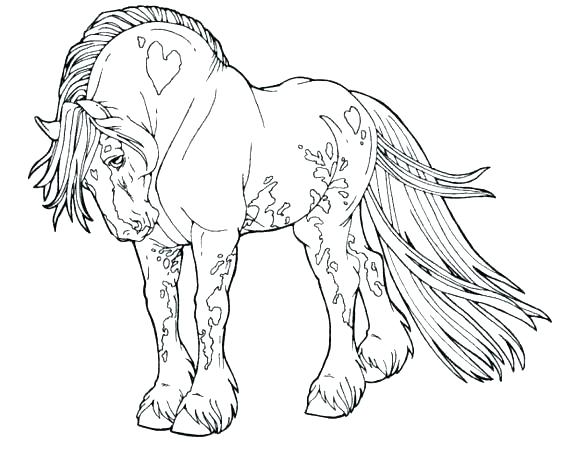 564x465 Horse Color Page Horse Color Page For Adult Horse Coloring Pages