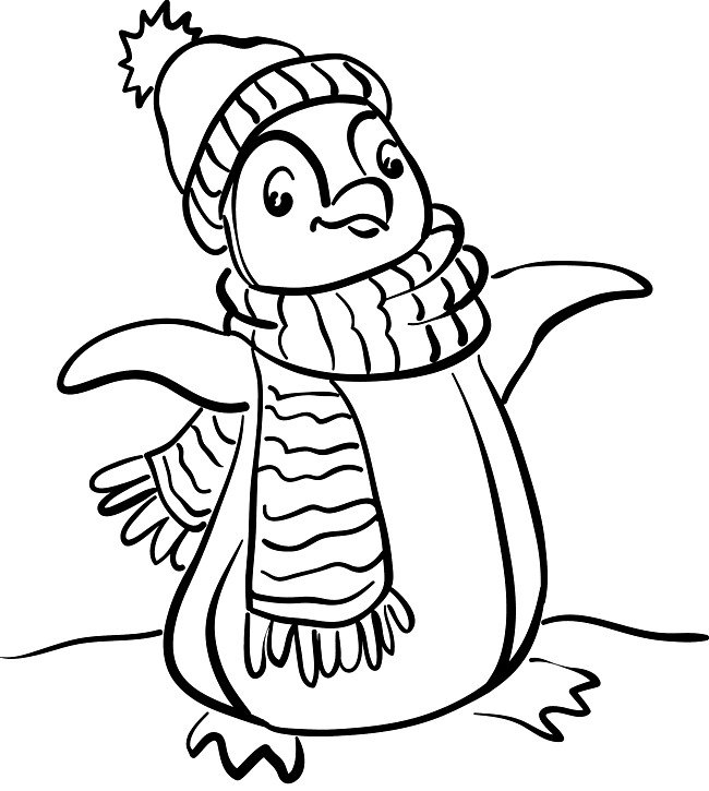 Realistic Penguin Coloring Pages