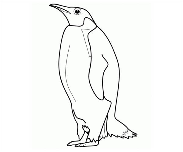 600x500 Penguin Coloring Pages