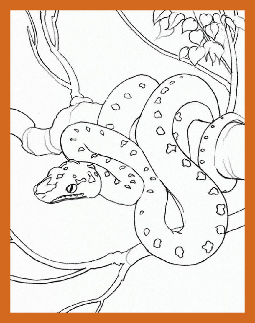 865x1094 Amazing Adult Printable Coloring Pages Pics For Realistic People