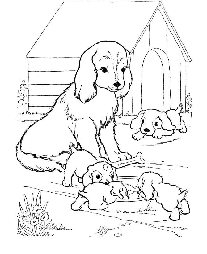 Realistic Puppy Coloring Pages