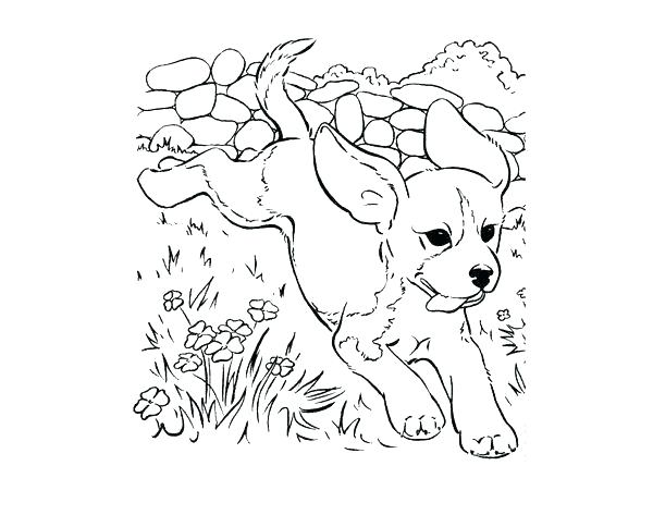 Realistic Puppy Coloring Pages At Getdrawings Com Free For