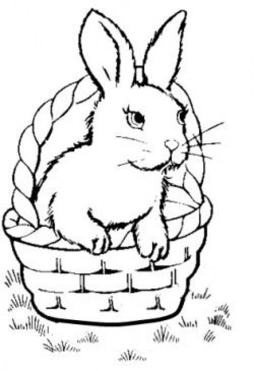 520x759 Bunny Coloring Pages Peter Rabbit, Bunny And Rabbit