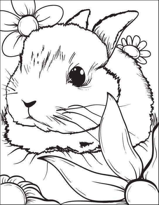 543x700 Realistic Rabbit Coloring Pages Gianfreda