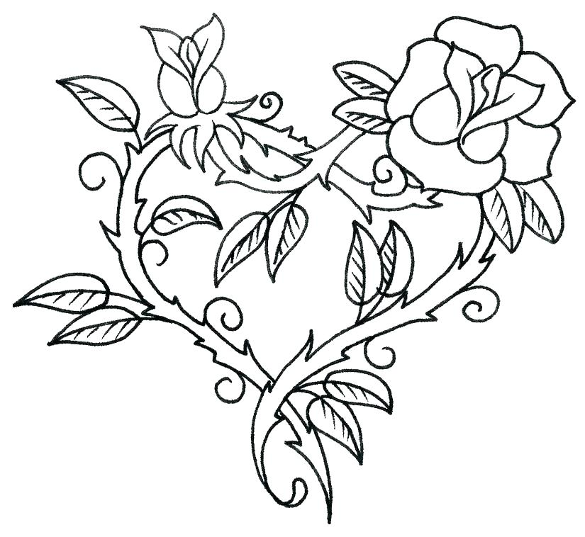 Realistic Rose Coloring Pages