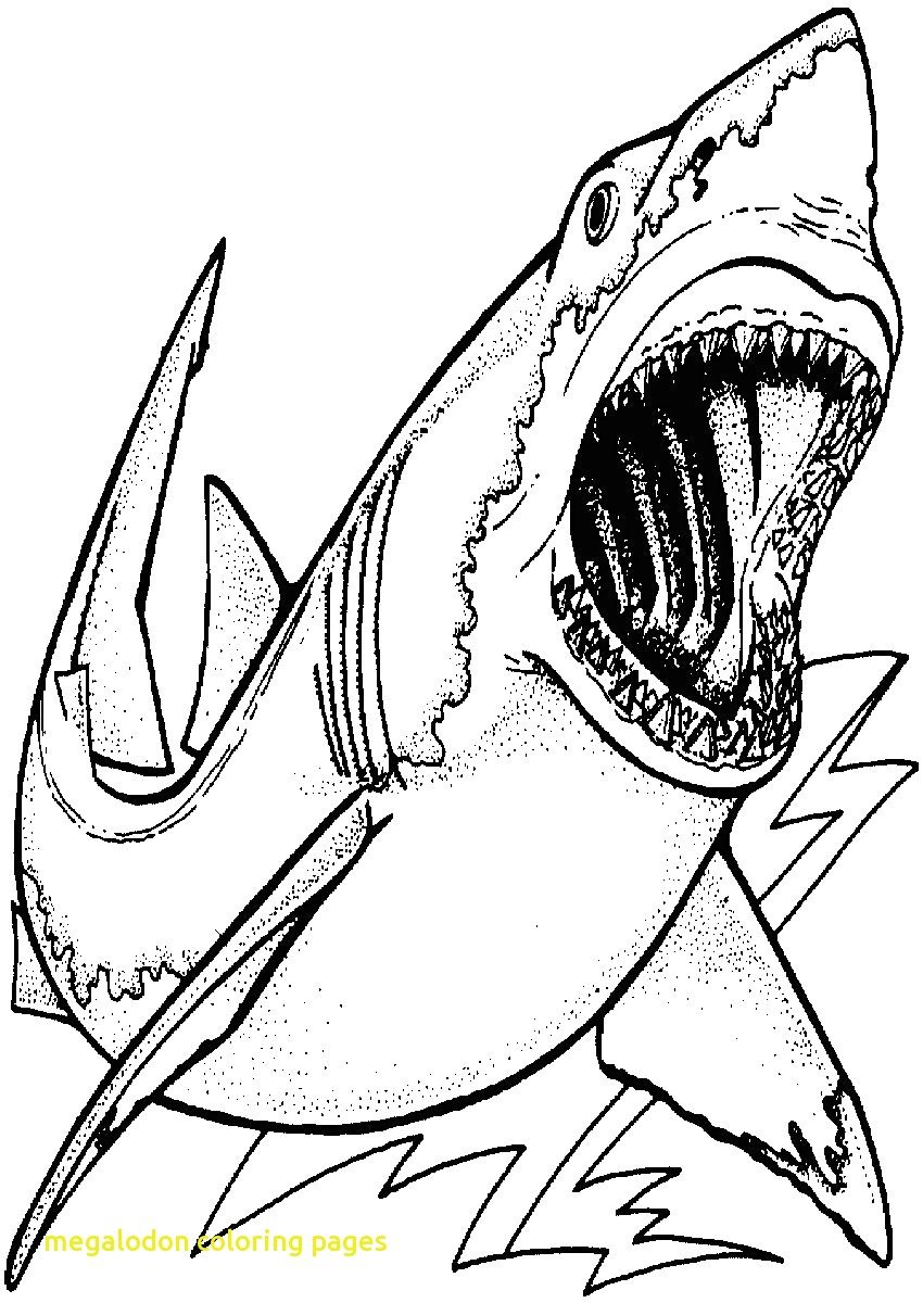 Realistic Shark Coloring Pages at GetDrawings.com | Free for ...