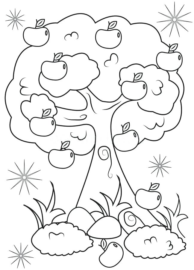 648x900 Apple Tree Coloring Page Download Apple Tree Coloring Page Stock