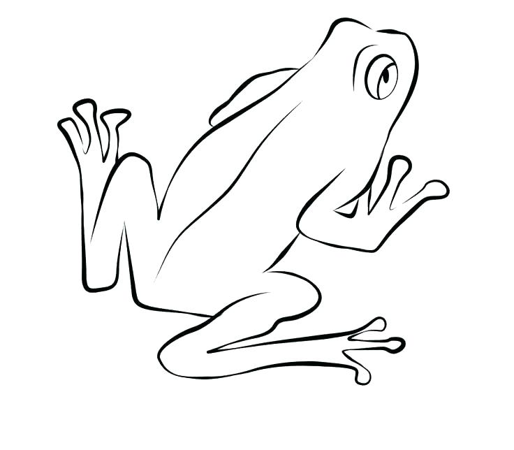 736x644 Coloring Page Realistic Frog Coloring Page Baby Frog Coloring Page