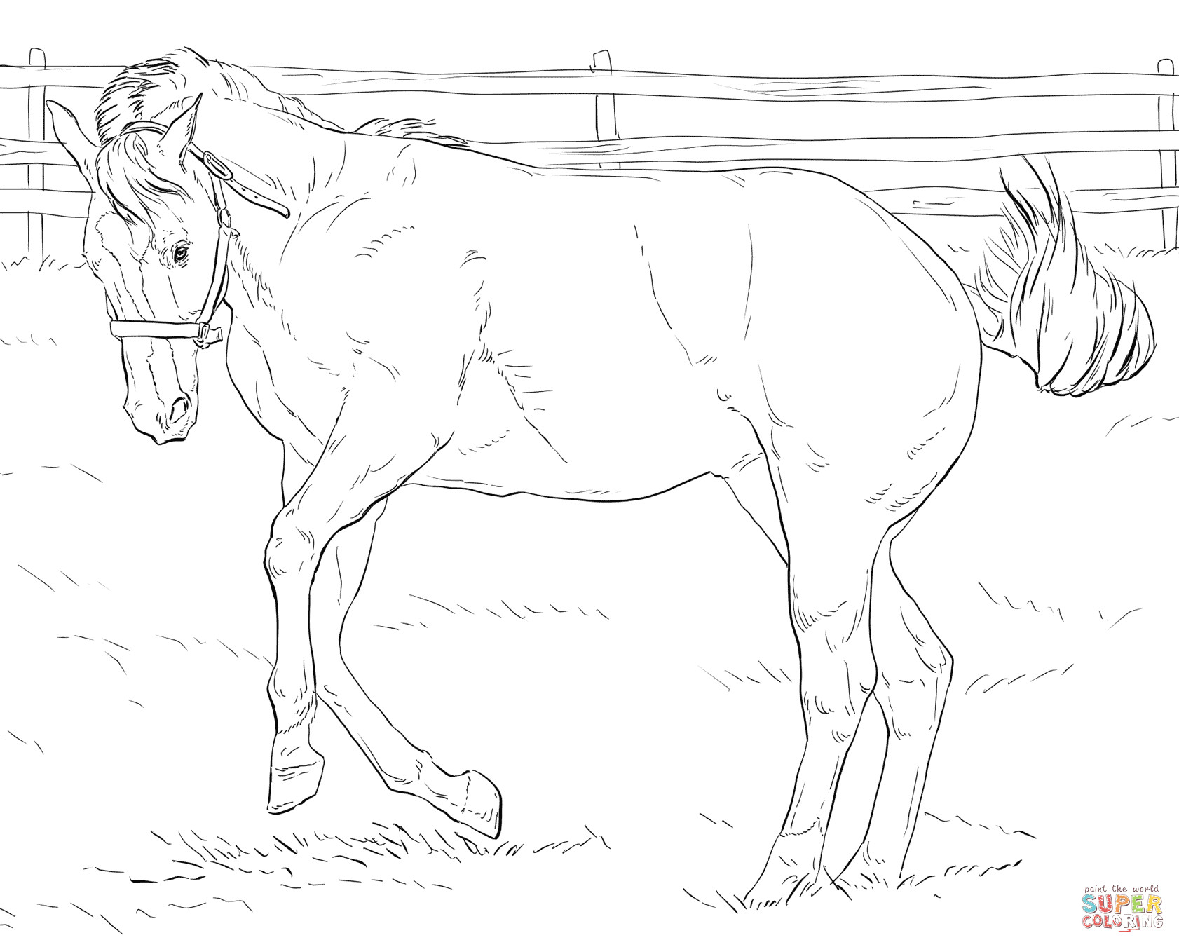 1682x1351 realistic horse drawing at getdrawings com free for personal use