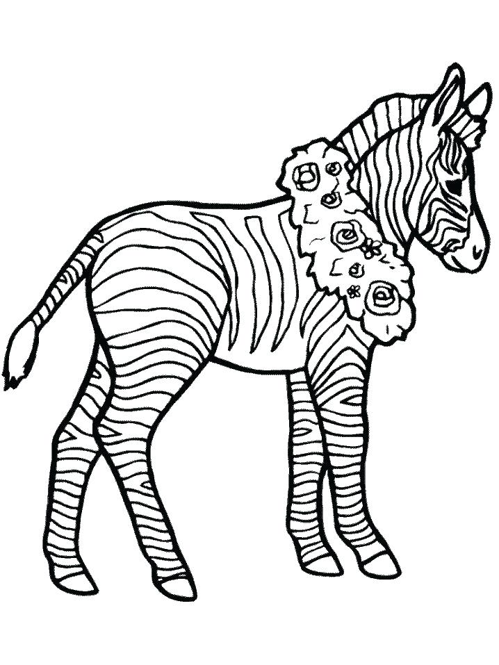 718x957 Zebra Coloring Pages Zebra Coloring Pages For Kids To Print