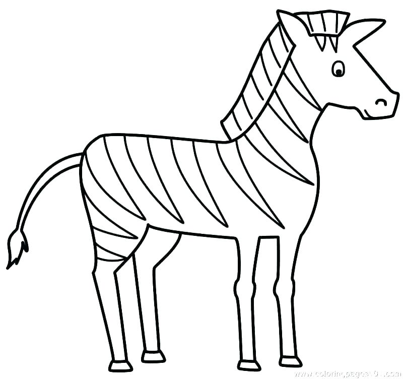 800x752 Zebra Coloring Sheet Zebra Coloring Pages Zebra Coloring Picture