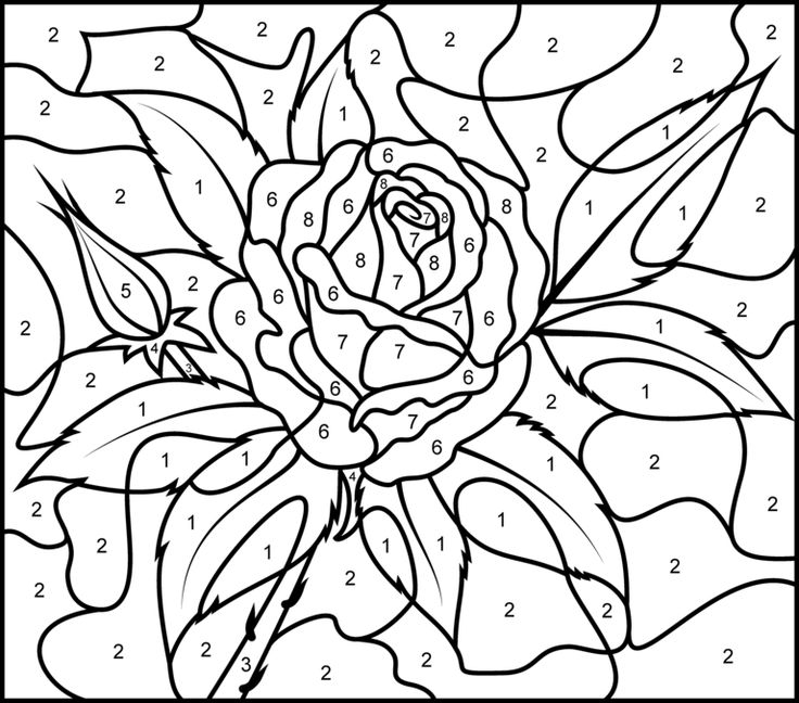 Really Hard Color By Number Coloring Pages With Key