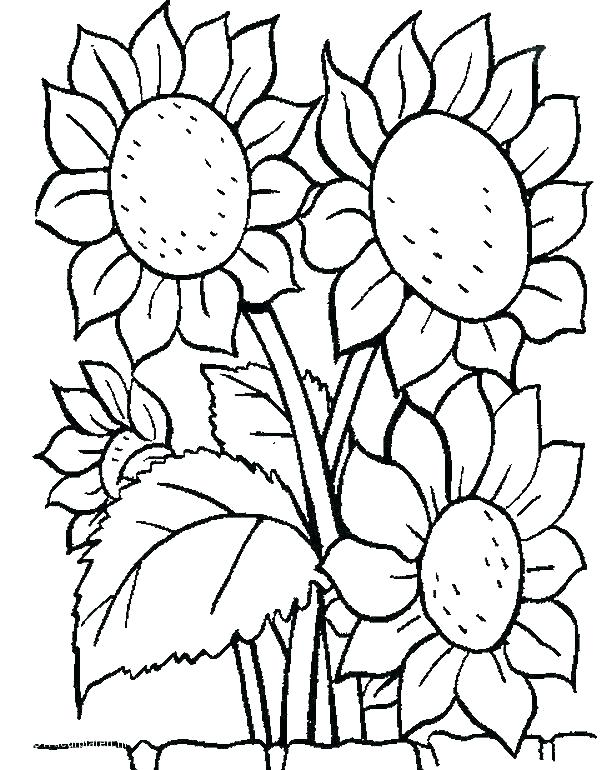 616x770 Hard Flower Coloring Pages Cool Flower Coloring Pages Hard