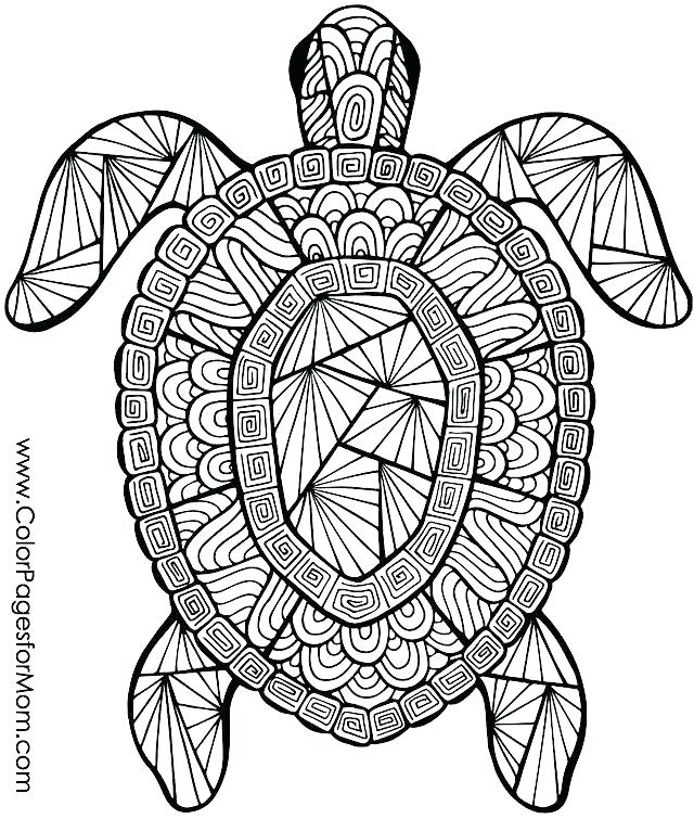640x755 Hard Animal Coloring Pages Animal Coloring Page Best Animal